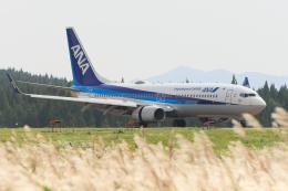 西風さんが、大館能代空港で撮影した全日空 737-8ALの航空フォト(飛行機 写真・画像)