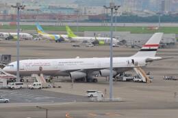 fly A340さんが、羽田空港で撮影したエジプト政府 A340-211の航空フォト(飛行機 写真・画像)