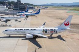 SGさんが、福岡空港で撮影した日本航空 737-846の航空フォト(飛行機 写真・画像)