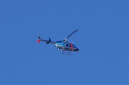 mild lifeさんが、大阪市舞洲北港緑地で撮影した大阪府警察 206L-4 LongRanger IVの航空フォト(飛行機 写真・画像)