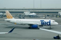 TA27さんが、サンフランシスコ国際空港で撮影したユナイテッド航空 A320-232の航空フォト(飛行機 写真・画像)