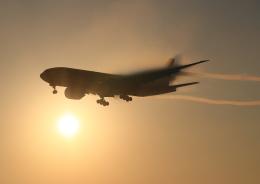 成田国際空港 - Narita International Airport [NRT/RJAA]で撮影されたDHL - DHLの航空機写真