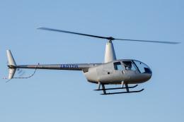 よっしぃさんが、八尾空港で撮影した第一航空 R44 Raven IIの航空フォト(飛行機 写真・画像)