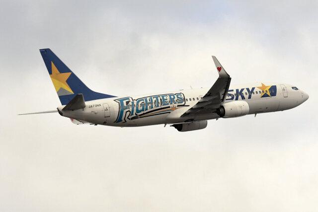 2019年12月01日に撮影されたスカイマークの航空機写真