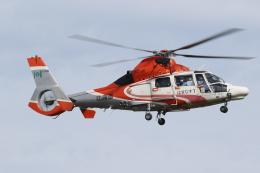 ゴンタさんが、札幌飛行場で撮影した北海道防災航空隊 AS365N3 Dauphin 2の航空フォト(飛行機 写真・画像)