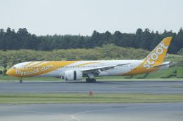 Sharp Fukudaさんが、成田国際空港で撮影したスクート (〜2017) 787-9の航空フォト(飛行機 写真・画像)