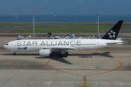 Tomo-Papaさんが、羽田空港で撮影した全日空 777-281の航空フォト(飛行機 写真・画像)