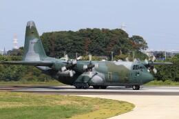 F-4さんが、入間飛行場で撮影した航空自衛隊 C-130H Herculesの航空フォト(飛行機 写真・画像)