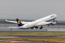 こだしさんが、羽田空港で撮影したルフトハンザドイツ航空 A340-642の航空フォト(飛行機 写真・画像)