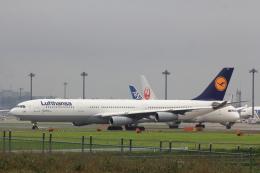 こだしさんが、成田国際空港で撮影したルフトハンザドイツ航空 A340-313Xの航空フォト(飛行機 写真・画像)