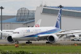 panchiさんが、成田国際空港で撮影した全日空 787-9の航空フォト(飛行機 写真・画像)