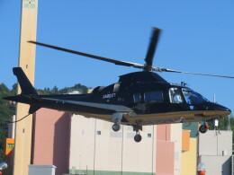 チダ.ニックさんが、静岡ヘリポートで撮影したアルペン A109E Powerの航空フォト(飛行機 写真・画像)