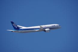 JA8037さんが、羽田空港で撮影した全日空 787-9の航空フォト(飛行機 写真・画像)
