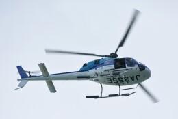 M.Tさんが、那覇空港で撮影したエクセル航空 AS355N Ecureuil 2の航空フォト(飛行機 写真・画像)