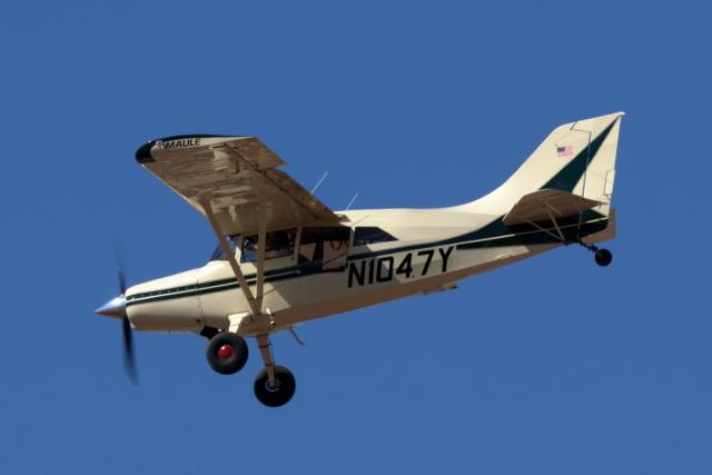 キャスバルさんが、フェニックス・スカイハーバー国際空港で撮影したアメリカ個人所有 M-7-235C Orionの航空フォト(飛行機 写真・画像)