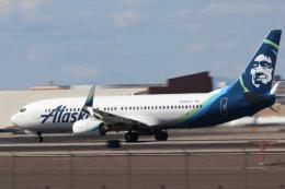 キャスバルさんが、フェニックス・スカイハーバー国際空港で撮影したアラスカ航空 737-890の航空フォト(飛行機 写真・画像)