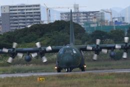 masa2525さんが、名古屋飛行場で撮影した航空自衛隊 C-130H Herculesの航空フォト(飛行機 写真・画像)