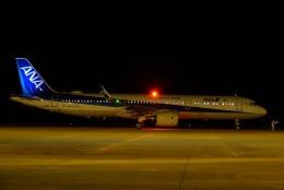 gomachanさんが、大館能代空港で撮影した全日空 A321-272Nの航空フォト(飛行機 写真・画像)