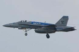 ZZさんが、嘉手納飛行場で撮影したアメリカ海兵隊 F/A-18C Hornetの航空フォト(飛行機 写真・画像)