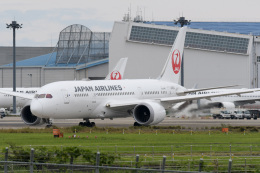 panchiさんが、成田国際空港で撮影した日本航空 787-8 Dreamlinerの航空フォト(飛行機 写真・画像)