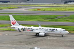 チョロ太さんが、羽田空港で撮影したJALエクスプレス 737-846の航空フォト(飛行機 写真・画像)
