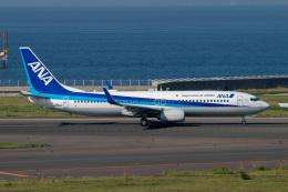 jr2rqcさんが、中部国際空港で撮影した全日空 737-881の航空フォト(飛行機 写真・画像)