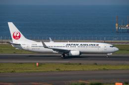 jr2rqcさんが、中部国際空港で撮影した日本航空 737-846の航空フォト(飛行機 写真・画像)