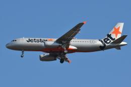 Deepさんが、成田国際空港で撮影したジェットスター A320-232の航空フォト(飛行機 写真・画像)