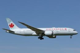安芸あすかさんが、成田国際空港で撮影したエア・カナダ 787-8 Dreamlinerの航空フォト(飛行機 写真・画像)