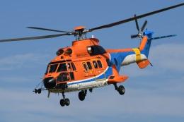Mizuki24さんが、東京ヘリポートで撮影した新日本ヘリコプター AS332L1 Super Pumaの航空フォト(飛行機 写真・画像)