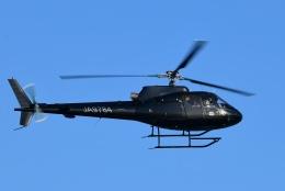 Mizuki24さんが、東京ヘリポートで撮影した日本法人所有 AS350B Ecureuilの航空フォト(飛行機 写真・画像)