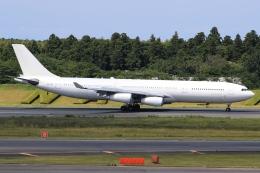 空飛ぶ丸さんさんが、成田国際空港で撮影したハイ・フライ・マルタ A340-313Xの航空フォト(飛行機 写真・画像)