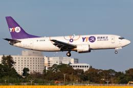 KoshiTomoさんが、成田国際空港で撮影したYTOカーゴ・エアラインズ 737-36Q(SF)の航空フォト(飛行機 写真・画像)