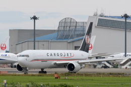 panchiさんが、成田国際空港で撮影したカーゴジェット・エアウェイズ 767-328/ER(BDSF)の航空フォト(飛行機 写真・画像)
