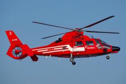 Tatsuya.Kさんが、東京ヘリポートで撮影した東京消防庁航空隊 AS365N3 Dauphin 2の航空フォト(飛行機 写真・画像)