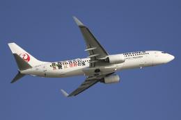 Sharp Fukudaさんが、羽田空港で撮影した日本航空 737-846の航空フォト(飛行機 写真・画像)