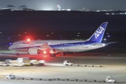 Sharp Fukudaさんが、羽田空港で撮影した全日空 787-8 Dreamlinerの航空フォト(飛行機 写真・画像)