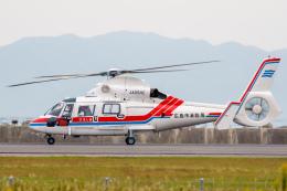 よっしぃさんが、神戸空港で撮影した広島市消防航空隊 AS365N3 Dauphin 2の航空フォト(飛行機 写真・画像)