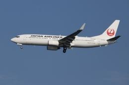 SIさんが、羽田空港で撮影した日本航空 737-846の航空フォト(飛行機 写真・画像)
