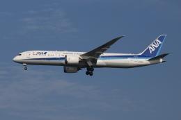 SIさんが、羽田空港で撮影した全日空 787-9の航空フォト(飛行機 写真・画像)