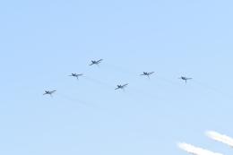 じょ~まんさんが、岐阜基地で撮影した航空自衛隊 T-4の航空フォト(飛行機 写真・画像)