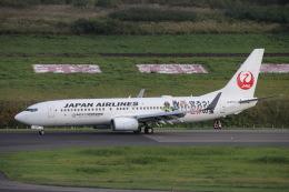 wingace752さんが、青森空港で撮影した日本航空 737-846の航空フォト(飛行機 写真・画像)