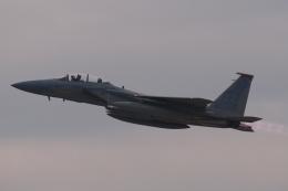木人さんが、茨城空港で撮影したアメリカ空軍 F-15D-37-MC Eagleの航空フォト(飛行機 写真・画像)