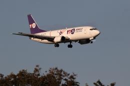 GNPさんが、成田国際空港で撮影したYTOカーゴ・エアラインズ 737-37K(SF)の航空フォト(飛行機 写真・画像)