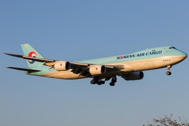 walker2000さんが、成田国際空港で撮影した大韓航空 747-8B5F/SCDの航空フォト(飛行機 写真・画像)
