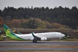 hachiさんが、成田国際空港で撮影した春秋航空日本 737-8ALの航空フォト(飛行機 写真・画像)