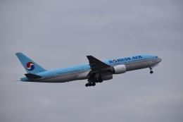 hachiさんが、成田国際空港で撮影した大韓航空 777-2B5/ERの航空フォト(飛行機 写真・画像)