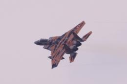 イソロクガトブさんが、小松空港で撮影した航空自衛隊 F-15DJ Eagleの航空フォト(飛行機 写真・画像)
