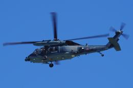 yabyanさんが、名古屋飛行場で撮影した航空自衛隊 UH-60Jの航空フォト(飛行機 写真・画像)