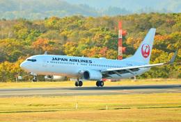 パンダさんが、釧路空港で撮影した日本航空 737-846の航空フォト(飛行機 写真・画像)